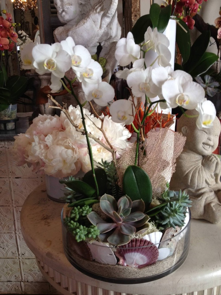 nisies-enchanted-florist-orange-county-orchids-5