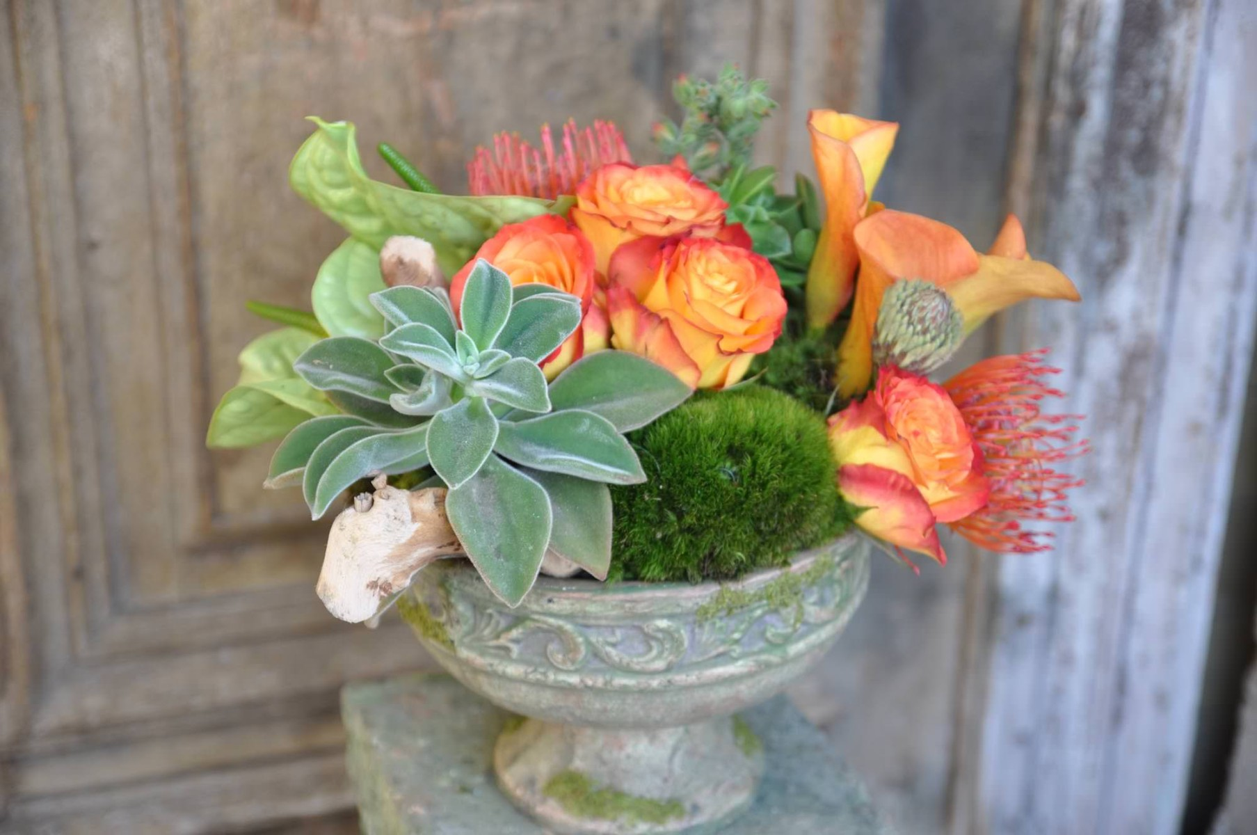 nisies-enchanted-florist-orange-county-succulents-8